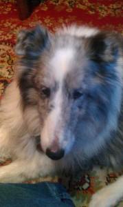 My boy, Eddie